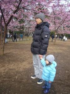 かわず桜 林試の森公園 散歩 武蔵小山